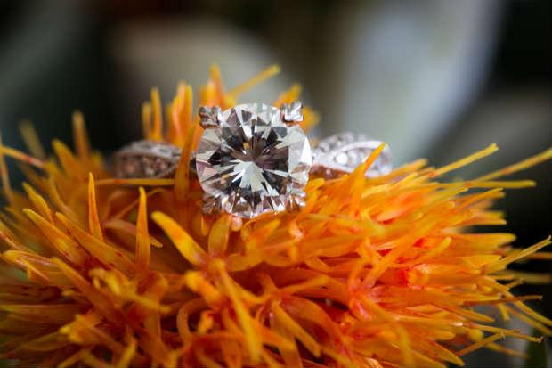 amazing-ring-shots-amy-bennett-photography5