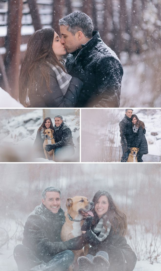 Snowy engagement photos with the whole family (the couple and their fur kid)