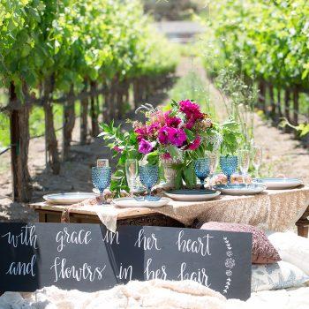 Vineyard Bridal Shower